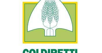 indagine-coldiretti-italiani-cibo-scaduto