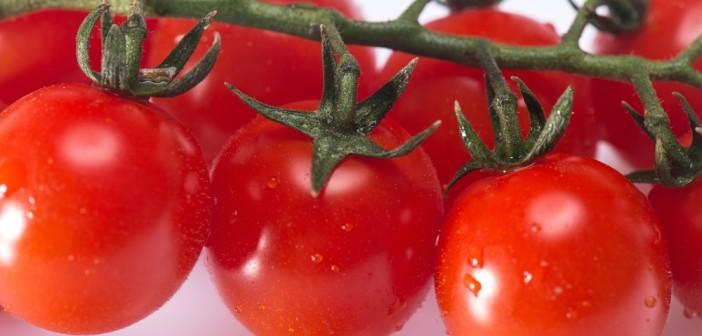 Pomodoro di Pachino.