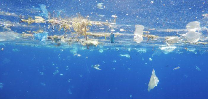 Plastica, campagna #iosonoambiente del Ministero, materiali e date