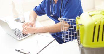 ricetta-veterinaria-elettronica-ministero-salute