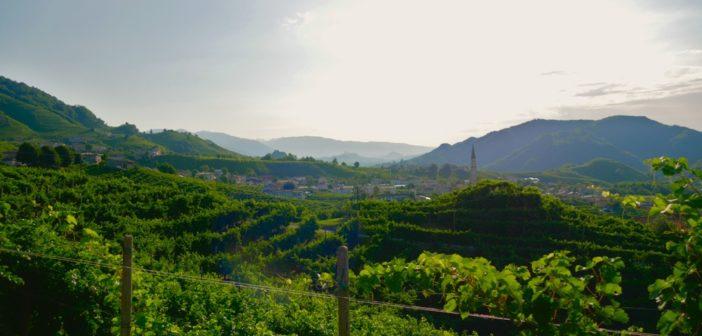 colline-prosecco-patrimonio-unesco