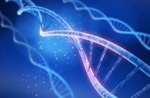 iss-ricerca-modello-cellulare-siod