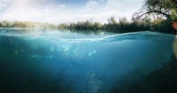 bando-tutela-biodiversita-acque-interne-lazio-2019