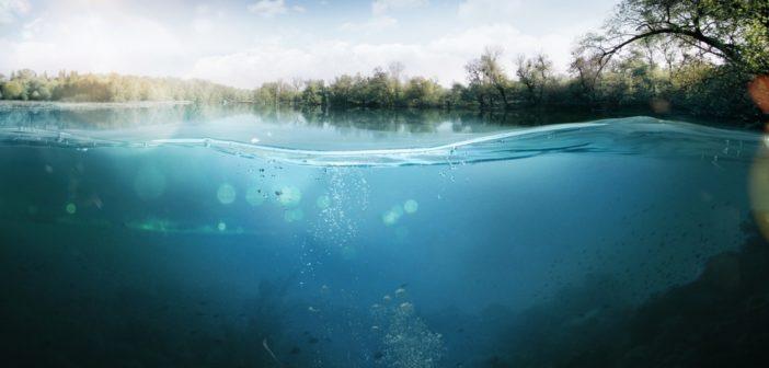 Biodiversità e tutela delle acque interne, bando della Regione Lazio