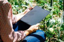 consulenza-aziende-agricole-lazio